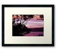 Pittwater Musk Framed Print