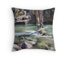 Umbrawarra 2 Throw Pillow