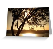 Pittwater Gold Greeting Card