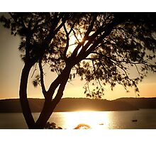 Pittwater Gold Photographic Print