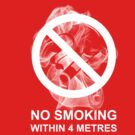 Respect My Choice Not To Smoke (metric) by Michael Lee