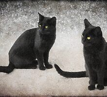 Two of a kind by missmoneypenny