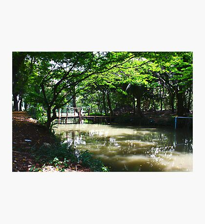 Greenshade - Canal noon Photographic Print