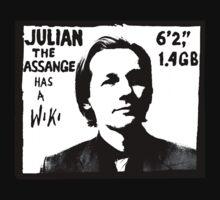 Julian Assange has a Wiki Kids Clothes
