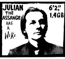 Julian Assange has a Wiki by glyphobet