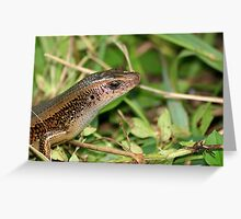 Wild Philippine Lizard Greeting Card