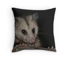 Young Opposum Throw Pillow