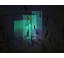 Transparent glasses Photographic Print