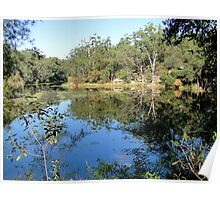 Reflecting Nature - Lake Parramatta Poster