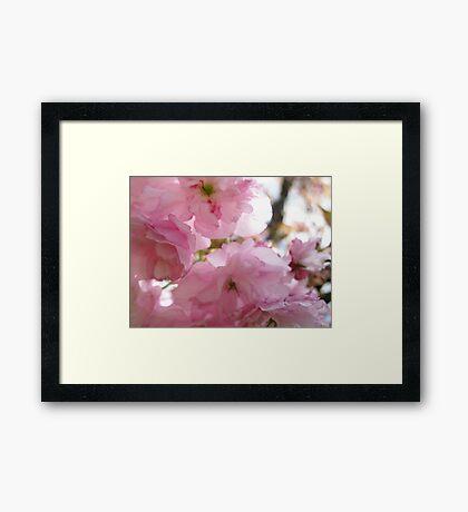 Ma Cherry Amour Framed Print