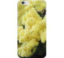 wattle blossom glow iPhone Case/Skin