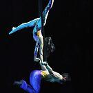 Aerial Acrobatics by Robin Lee