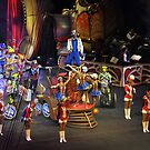Circus Number by Robin Lee