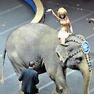 Elephant Ride by Robin Lee