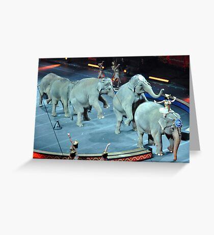Circus Elephants Greeting Card