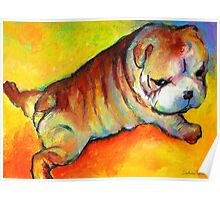Cute Bulldog Puppy dog painting Svetlana Novikova Poster
