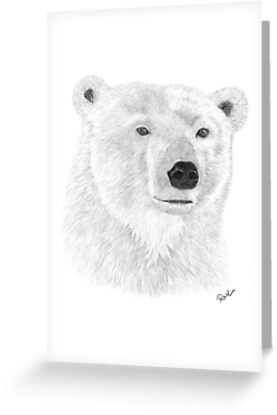 Polar Bear by rosannamaria