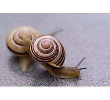 Who Says Snails Are Not Sporty? Photographic Print