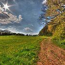 Springtime  by astrolabio