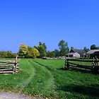 The Field in Autumn by hmartinphotos