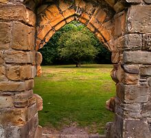 Old stone abbey archway by StefanFierros