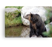 Oh Momma! Canvas Print