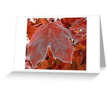 The Frosted Maple Leaf Greeting Card