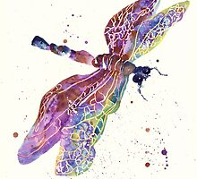 Dragonfly Dream by eastwitching