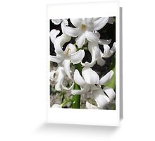 Absent of Color... Greeting Card