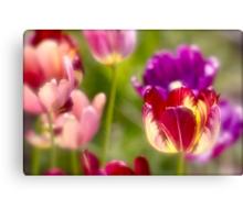 Tulips landscape. by Brown Sugar . Views (411) . Favs (8). Ola la , so good !!!  Thank you friends !!! Happy Easter !!! Amen ! Canvas Print