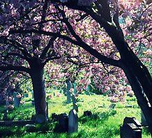Eternal Rest by Josephine Pugh