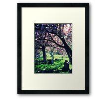 Eternal Rest Framed Print