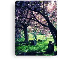 Eternal Rest Canvas Print