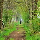 Riding out on the spring path by jchanders