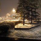 Snow in Korea! by Bernie Stronner