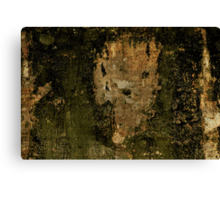 In Binary Decay Canvas Print