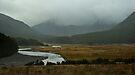 Makarora River valley, NZ by Odille Esmonde-Morgan