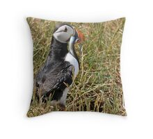 Dinner time for the kids Throw Pillow