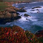 Big Sur Autumn by peterchristian