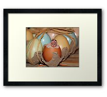 Look who just hatched! Framed Print