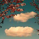 April Clouds by Aimee Stewart