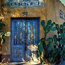 Elysian Grove by Lois  Bryan
