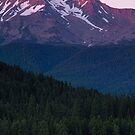 Mount Shasta by Anne McKinnell