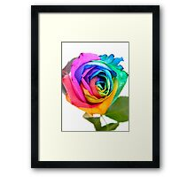 Rainbow Rose 01 Framed Print