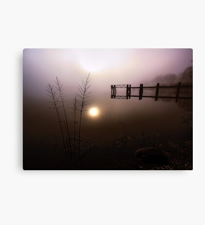 Reflection and Fog Canvas Print