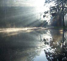 Morning Rays, Pemberton by Carolyn Boyden