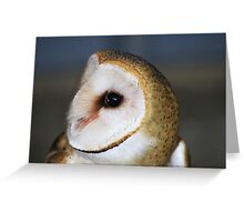 "Barn Owl - ""Casper"" Greeting Card"