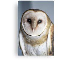 "Barn Owl - ""Casper"" Metal Print"