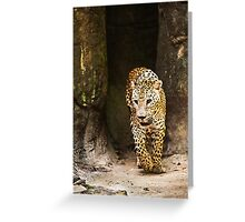 Leopard Greeting Card