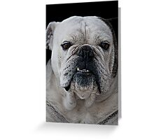Mad Max - Cute Bulldog with grumpy face Greeting Card